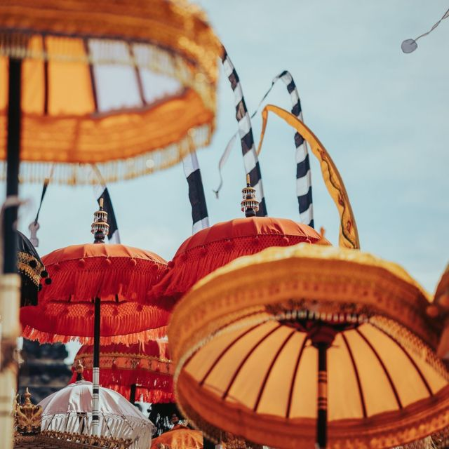 In preparation of Balinese ceremony, the temple decorated in colorful golden cloths and beautiful ornaments including these beautiful umbrellas called Tedung✨ In Ubud, you'll enhance your holiday experience with the holistic journey through wide range of ceremony happens here. #kclububud . For the best guarantee rate, please book by clicking the link in our bio.